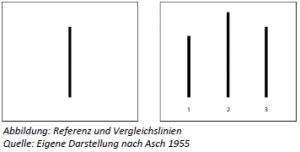 IU Psychologie Workbook Lektion 1 - Abbildung: Referenz und Vergleichslinien